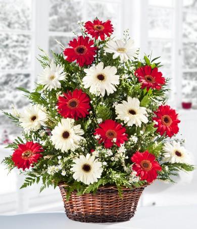 Send flowers to Venezuela