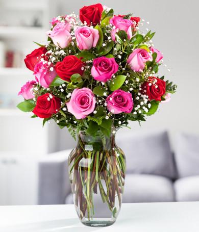 Rosas Rosadas y Rojas