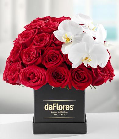 Rosas Rojas & Phalaenopsis