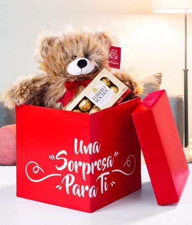Premium Bear Combo